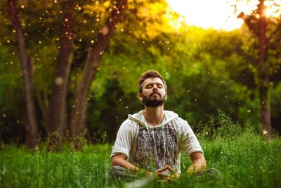 Mindfulness Therapy for Addiction
